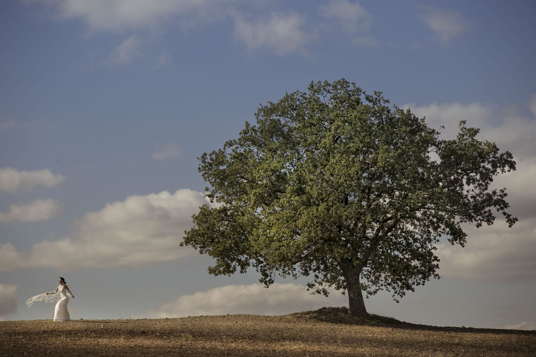 Trees :: Bride alone :: David Bastianoni wedding photographer