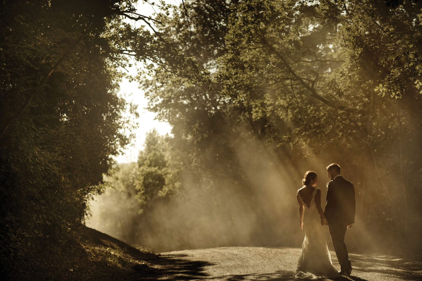 Forest :: Bride and groom. Couple :: David Bastianoni wedding photographer