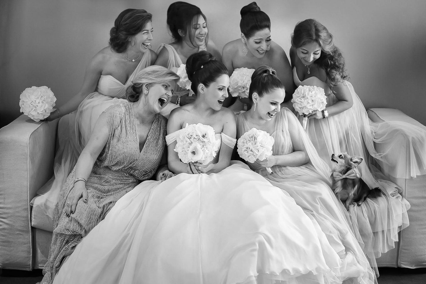 Little Dog :: Groups Bridal Parties :: David Bastianoni wedding photographer