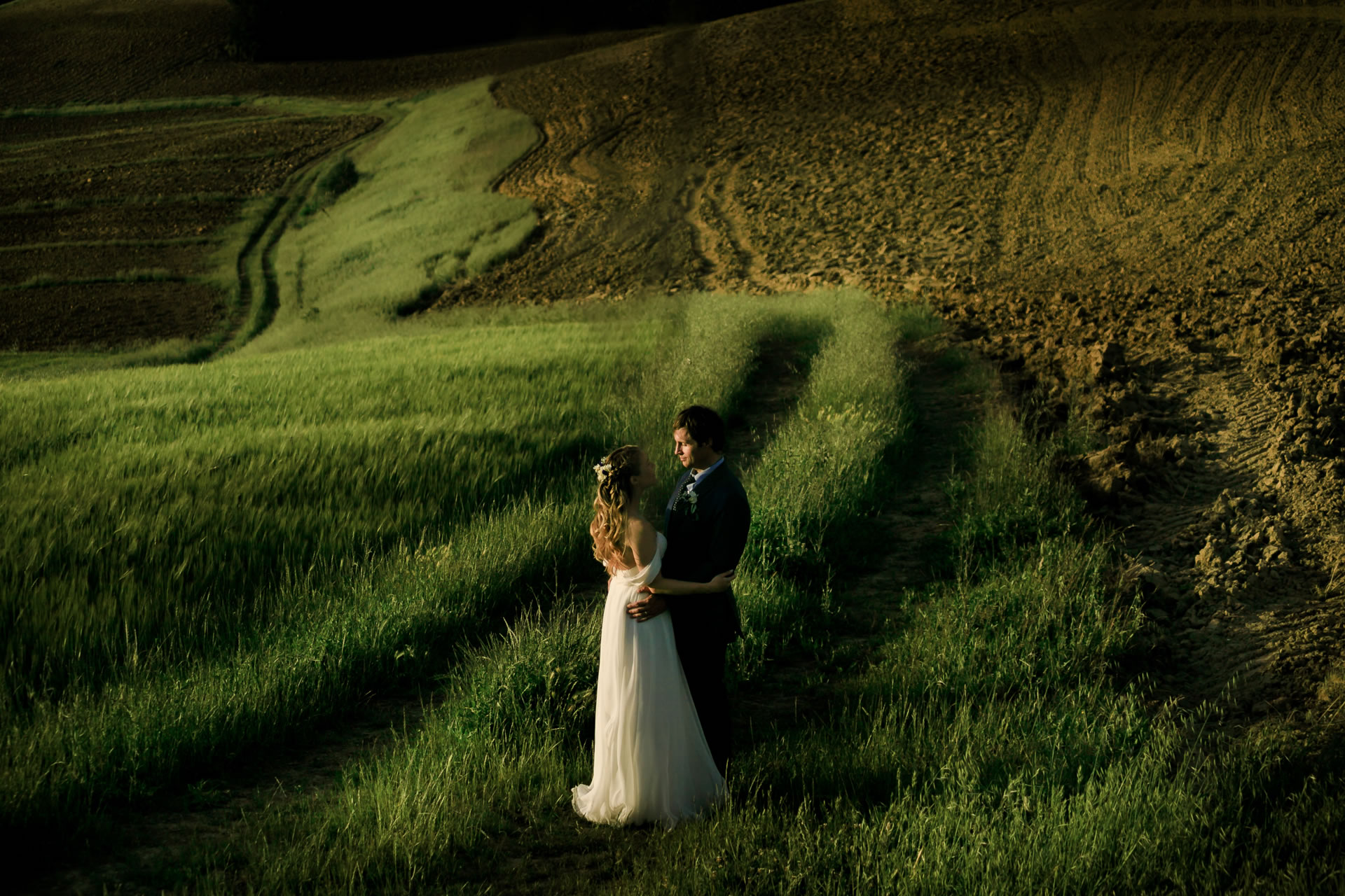 Field - 39 :: Wedding in Perugia countryside. Jean and Toby :: Luxury wedding photography - 38 :: Field - 39
