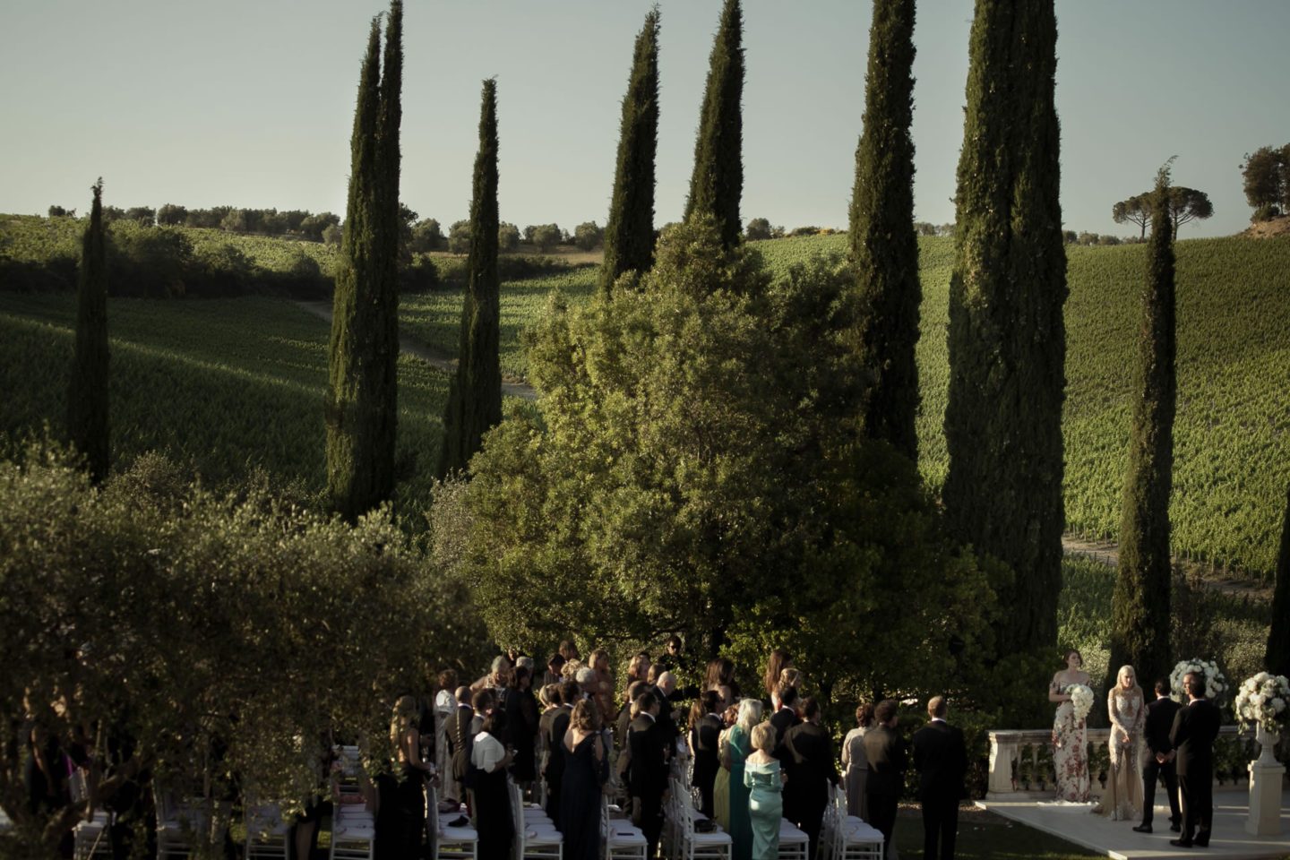 Trees :: Exciting wedding in the countryside of Siena :: Luxury wedding photography - 35 :: Trees