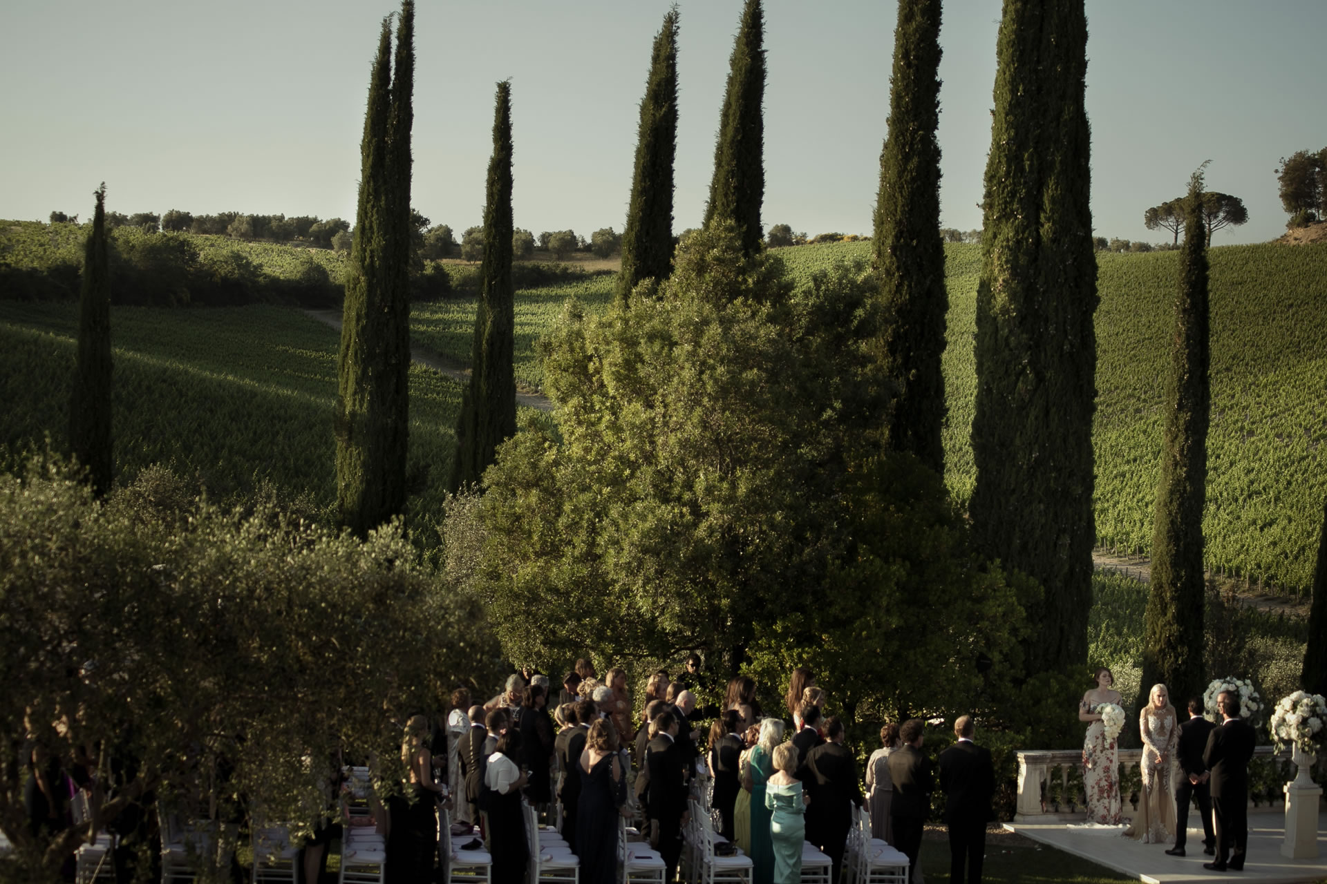 Trees - 36 :: Exciting wedding in the countryside of Siena :: Luxury wedding photography - 35 :: Trees - 36