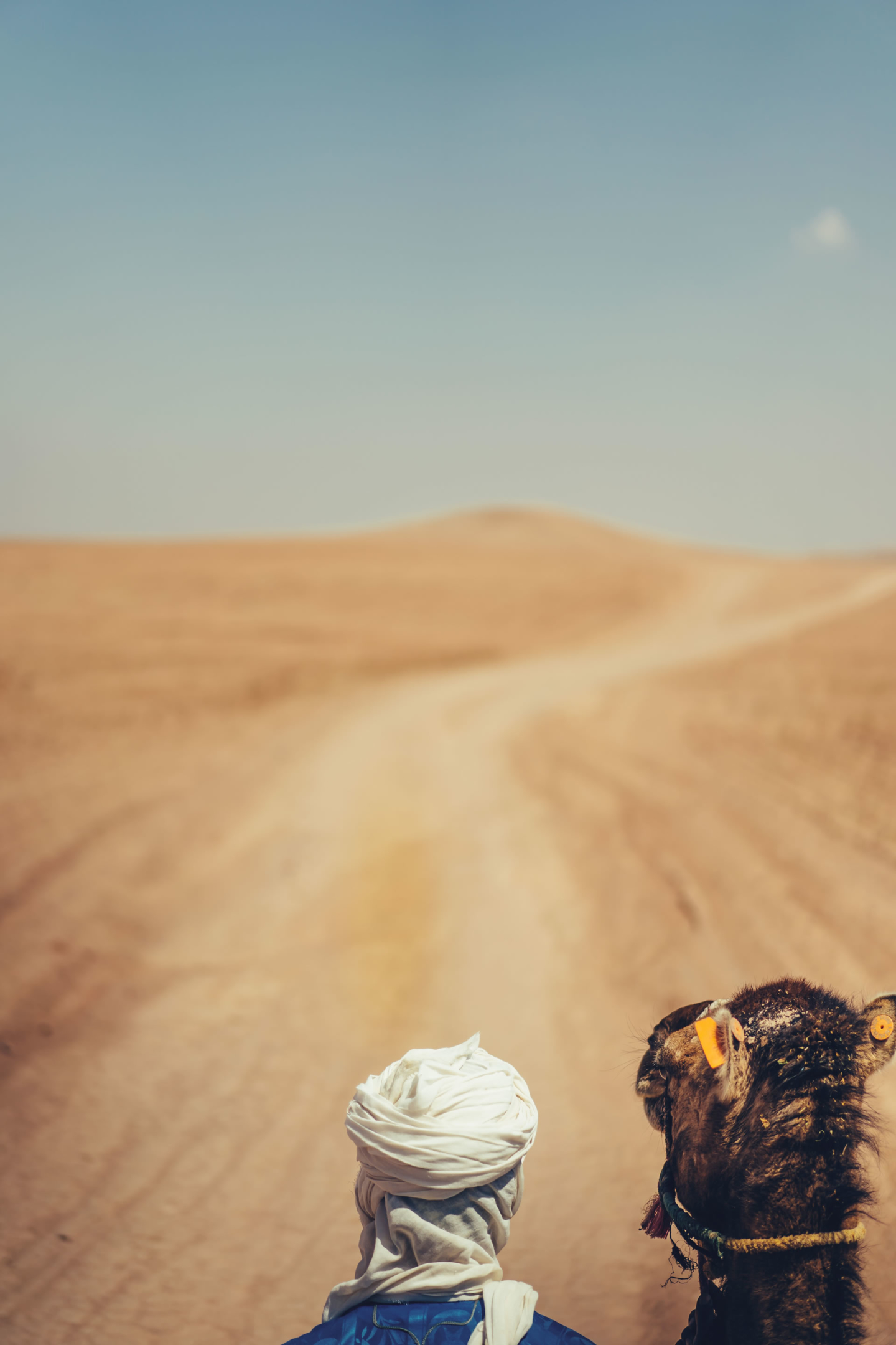 - 24 :: A tea in the desert: birthday in Marrakech :: Luxury wedding photography - 23 ::  - 24